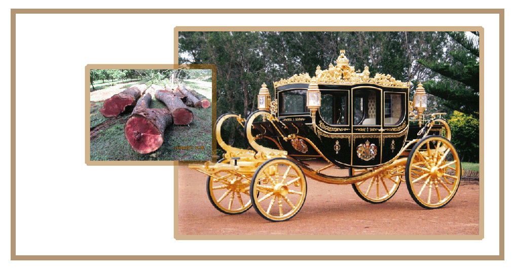 Diamond Jubilee State Coach built from timber sourced from Cedarworks