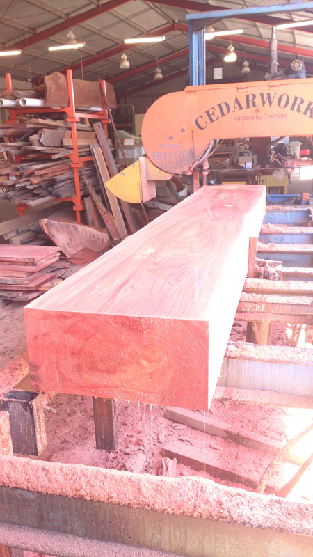 beautiful australian red cedar readied for further refining