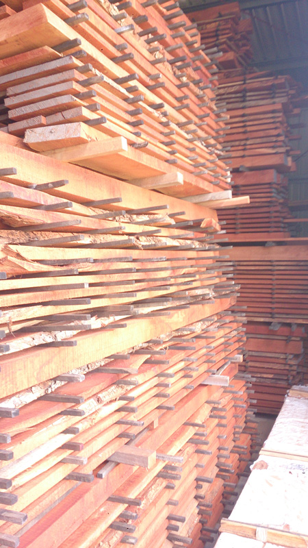 various specialty timbers airing and drying